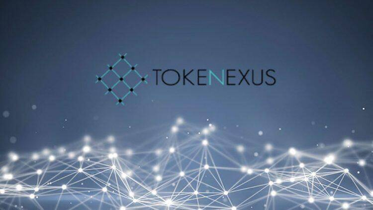 I want an opinion of Tokenexus, let\'s start at the beginning